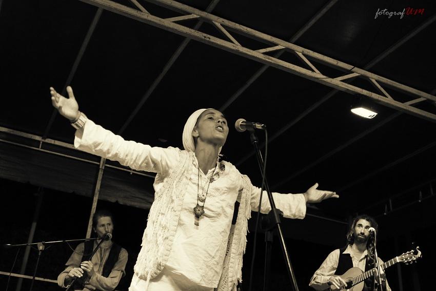 Festival Drienok 2014